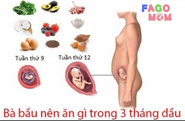 Chế độ dinh dưỡng cho bà mẹ mang thai 3 tháng đầu